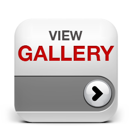 viewGalleryIcon